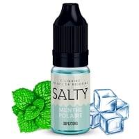 E liquide Menthe Polaire Salty | Sel de Nicotine