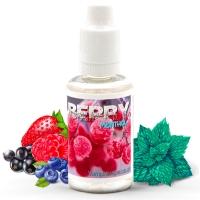 Concentré Berry Menthol Vampire Vape Arome DIY