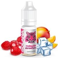 Concentré Malaysian Strawberry Solana Arome DIY