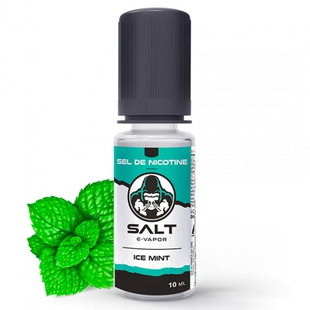Ice Mint Salt E-Vapor