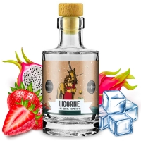 Licorne Edition Collector Astrale Curieux