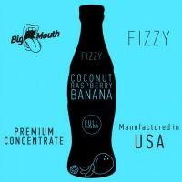 Concentré Coconut Raspberry Banana Fizzy Big Mouth