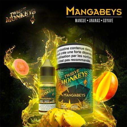 Mangabeys Twelve Monkeys