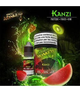 Kanzi Twelve Monkeys